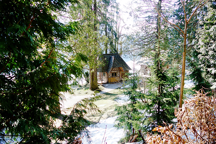 slovenia-lake-bled-wood-cabin