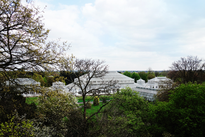 kew-garden-palm-house-greenhouse-view