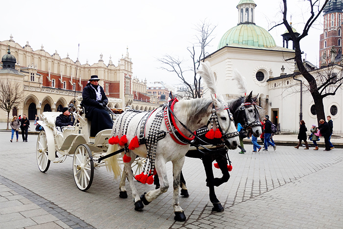 krakow-square-horses-carriage