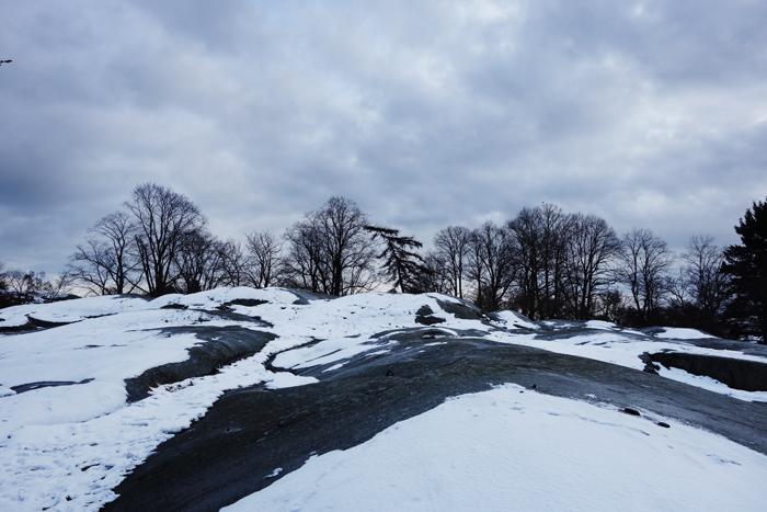 helsinki-snowy-trees-kaivopuisto
