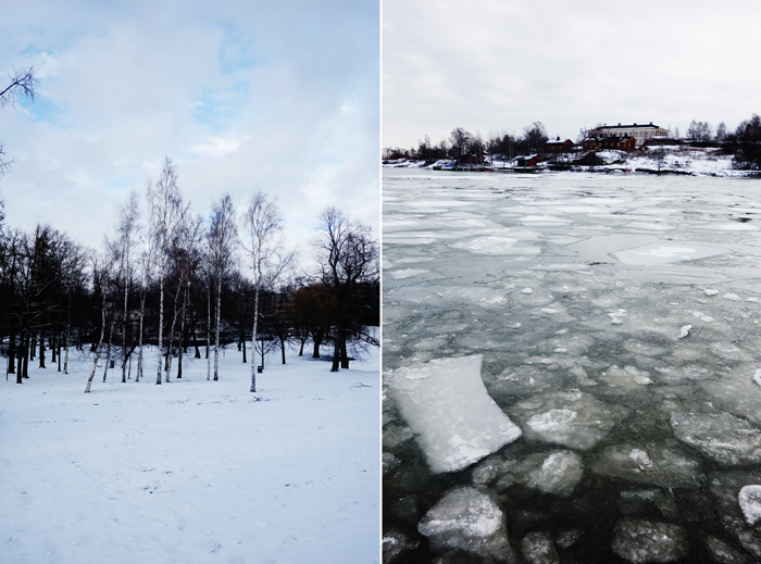 trees-helsinki-ice-sheets-sea